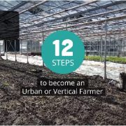 The 12 steps to become an urban or vertical farmer