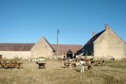 Les 13 Bles Goatfarming and fromagerie
