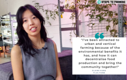 12 steps to urban farming Elaine Kung