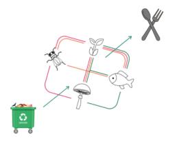 high tech ecosystem farming 12 steps to farming