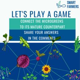 12 steps to farming smart farmers microgreens