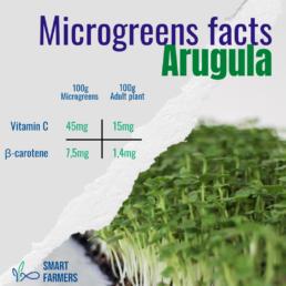 12 steps to farming Smart Farmers microgreens nutrional facts Arugula