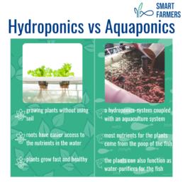 12 steps to farming Smart Farmers Hydroponics vs aquaponics
