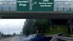 Urban Farming Meme Tournament